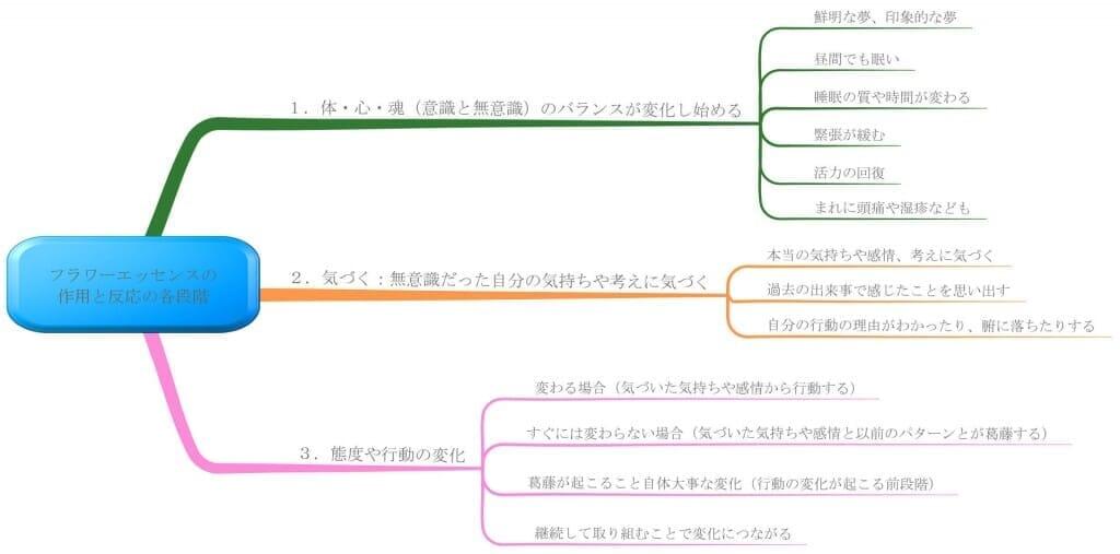 フラワーエッセンス効果の表れるプロセス