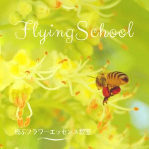 飛ぶフラワーエッセンス教室