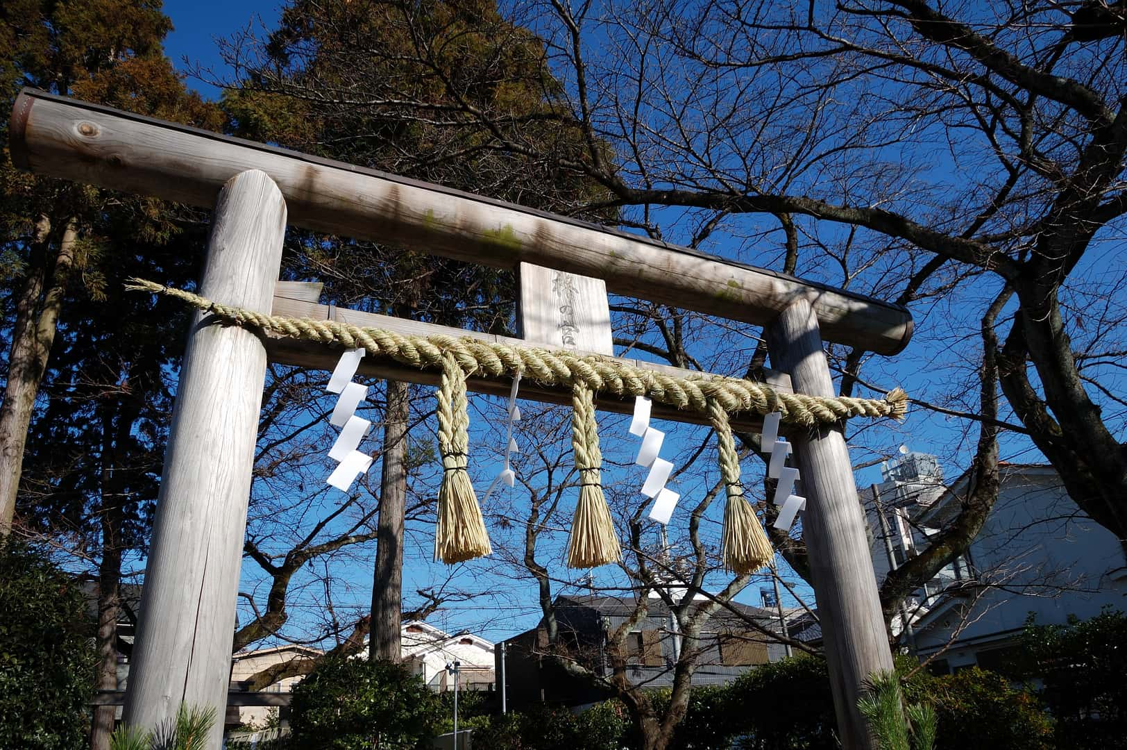 torii_20151230_023