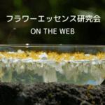 フラワーエッセンス研究会 on the WEB